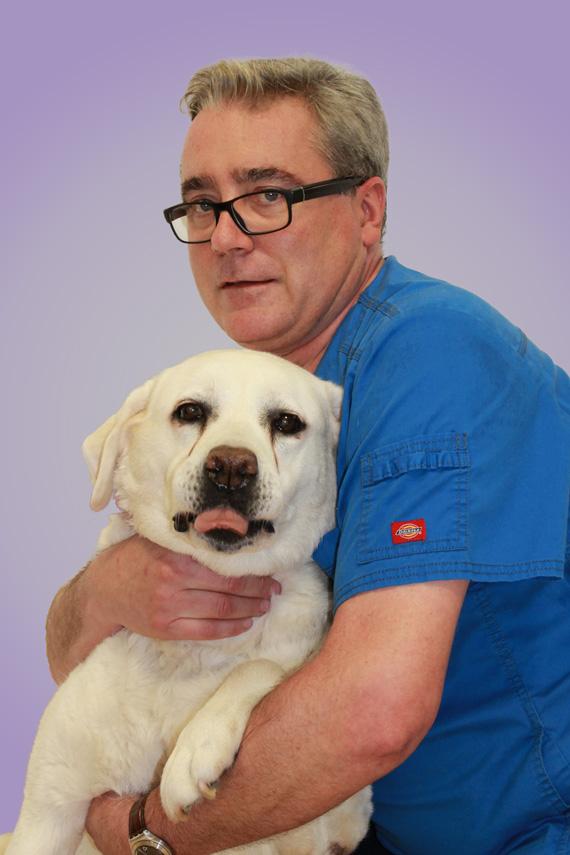 Alizee vet clinic. Christophe FEVE