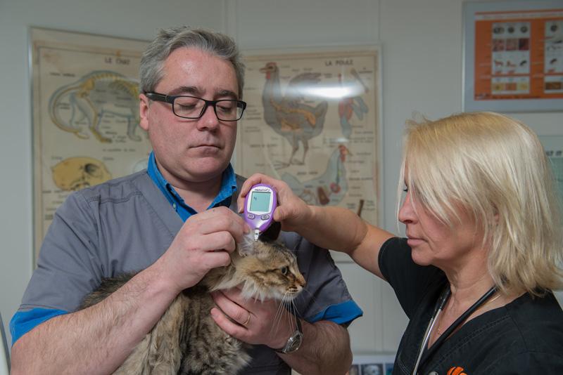 Clinique Vétérinaire Alizee - Paris